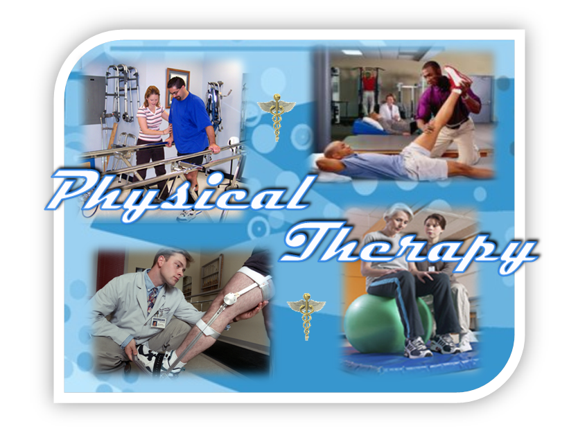High school students interested in studying physical therapy or athletic  training at Lebanon Valley College are invited to attend Physical Therapy Athletic